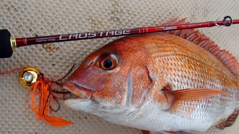 真鯛を釣ろう鯛ラバ・タックル8つの準備
