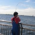 シリヤケイカの釣り方を7項目で解説